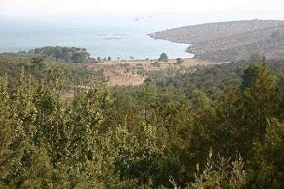 Property For Sale Or Rent: 1,640,000 sqm. Peninsula in Bodrum for sale