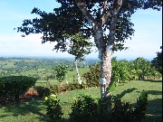 Real Estate For Sale: Beautiful Teak Farm in Mountains of Panama