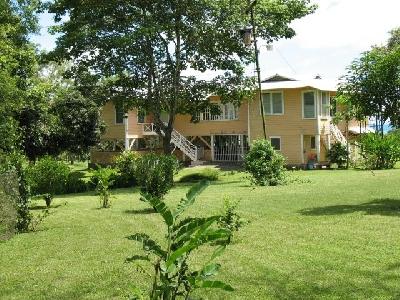 Property For Sale Or Rent: Vintage Banana Plantation Villa