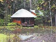 Real Estate For Sale: Totally Unique Rainforest Paradise
