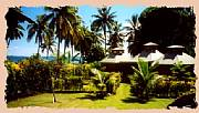 Property For Sale Or Rent: Taveuni Fiji's Best Oceanfront Accommodation