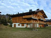 Rental Properties, Lease and Holiday Rentals: Attractive Luxury Apartment In Berner Oberland