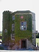 Rental Properties, Lease and Holiday Rentals: Fully Restored 17th Century Castle,South West Of England