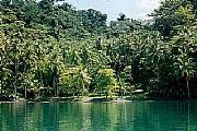 Real Estate For Sale: Golfo Dulce-Golfito (Rio Esquinas Region)