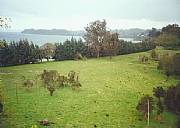 Real Estate For Sale: 20 Acres Of Land, 1200 Feet Beachfront, In Lake Llanquihue