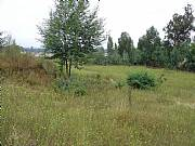 Real Estate For Sale: Land For Sale Near Valparaiso