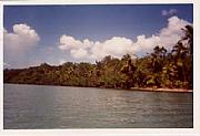 Real Estate For Sale: Caribbean Sea Front Lot