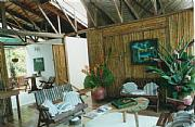 Real Estate For Sale: Caribbean Beach Lodge On Edge Of Rainforest