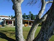 Real Estate For Sale: New Zealand - Lifestyle Vineyard - Queenstown