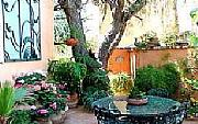 International real estates and rentals: Your Home In San Miguel De Allende