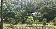 International real estates and rentals: Jungle Rainforest Retreat