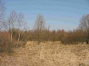 Real Estate For Sale: Attractive Land For Sale In Central Poland