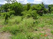 Real Estate For Sale: Prime Residential Building Lots