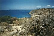 Real Estate For Sale: Ocean Front Land La Paz, Baja California