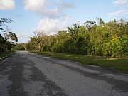 Real Estate For Sale: Large Lot For Sale In Exclusive Lyford Cay