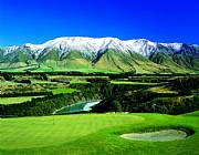 Real Estate For Sale: The Very Best Of New Zealand