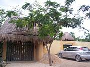 International real estates and rentals: Tulum Income Producing Property-Bed And Breakfast Potential