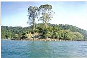 International real estates and rentals: Tropical Private Island In Rio De Janeiro, Brazil $399,000
