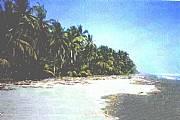 Real Estate For Sale: Oceanfront Development Land