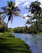 International real estates and rentals: Small Very Profitable Luxury Riverside Resort