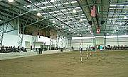International real estates and rentals: Equestrian Event & Breeding Estate Facility & Development