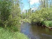 Real Estate For Sale: River Frontage In Minnesota Arrowhead Region - 3.5 Acres