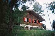 Real Estate For Sale: Chalet In The Swiss Alps On Two Blocks Of Land.