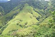 Rental Properties, Lease and Holiday Rentals: 42 Acres Of Prime Mountain Real Estate In Atenas, Costa Rica