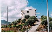 Real Estate For Sale: Great Property In The Heart Of Sicily