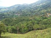 Real Estate For Sale: Wonderful Coffee Land With Fantastic Views