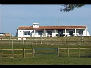 Real Estate For Sale: Luxury Farm/House On The Middle/South Portugal
