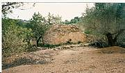 Real Estate For Sale: Olive Farm With Sea And Mountain Views Near Tortosa & Ebro R
