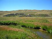 Real Estate For Sale: Income Producing Ranch With Abundant Wildlife