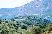 Real Estate For Sale: Waterfront Land On The Ionian Sea For Sale In Astakos Bay