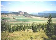 International real estates and rentals: Working Kamloops Ranch