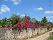 Real Estate For Sale: Las Bougainvillas In Historic Town Of Izamal