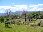 Real Estate For Sale: Residential Lots With Splendid View And Pleasant Climate