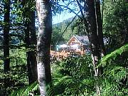 Real Estate For Sale: Andes Foothills Secluded In Woods With View To Pristine Lake