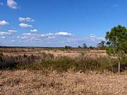Real Estate For Sale: Five Acre Country Lots