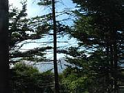 Real Estate For Sale: Secluded Lot On The Bay Of Fundy