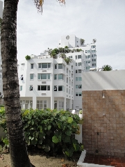 International real estates and rentals: Beautiful Apartment in Isla Verde, Carolina Puerto Rico