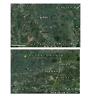 International real estates and rentals: 5 acres agricultural land