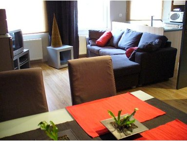 Property For Sale Or Rent: 2 bedroom apartment Iin heart of brussels